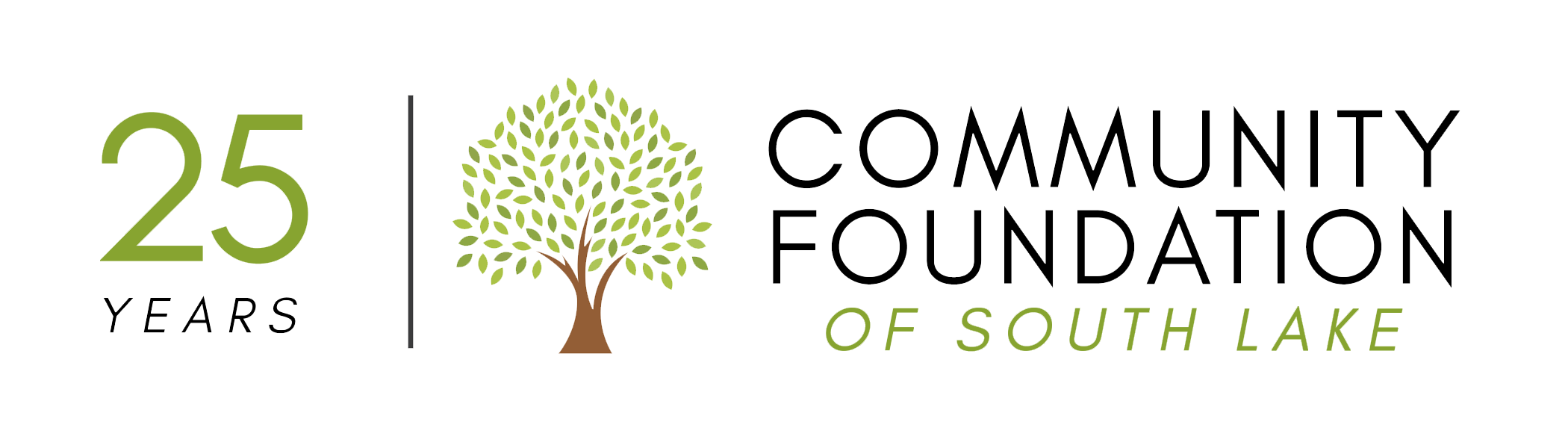 Community Foundation Of South Lake